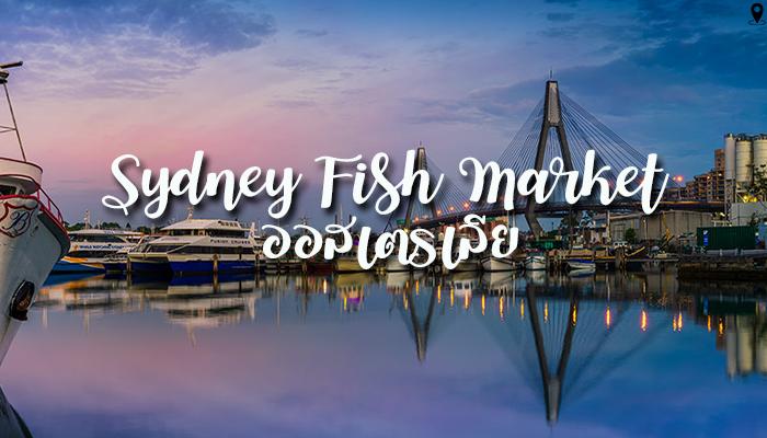 ตลาดปลาในซิดนีย์ Sydney Fish Market