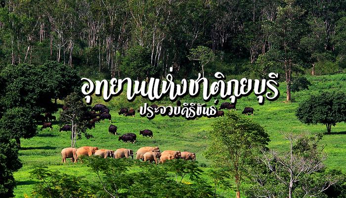 อุทยานแห่งชาติกุยบุรี มาส่องช้าง ดูกระทิงกันที่ ประจวบคีรีขันธ์